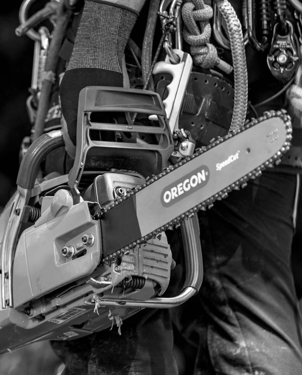 Oregon SpeedCut Sägekette Bild 5